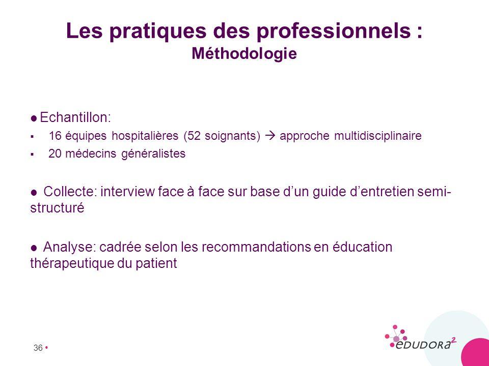 Les pratiques des professionnels : Méthodologie
