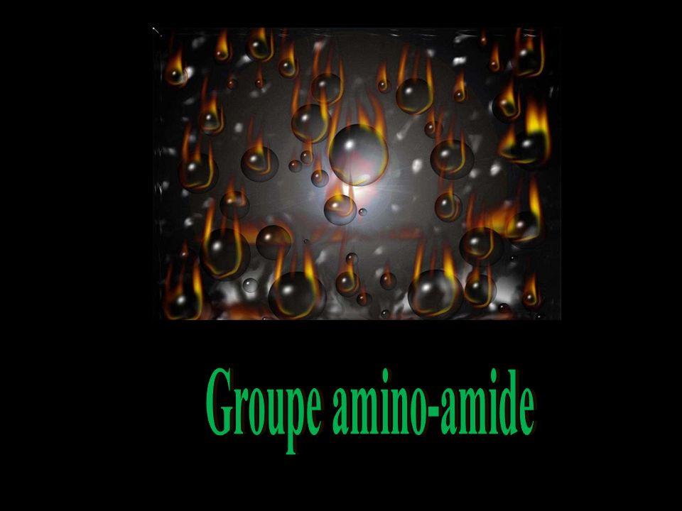 Groupe amino-amide