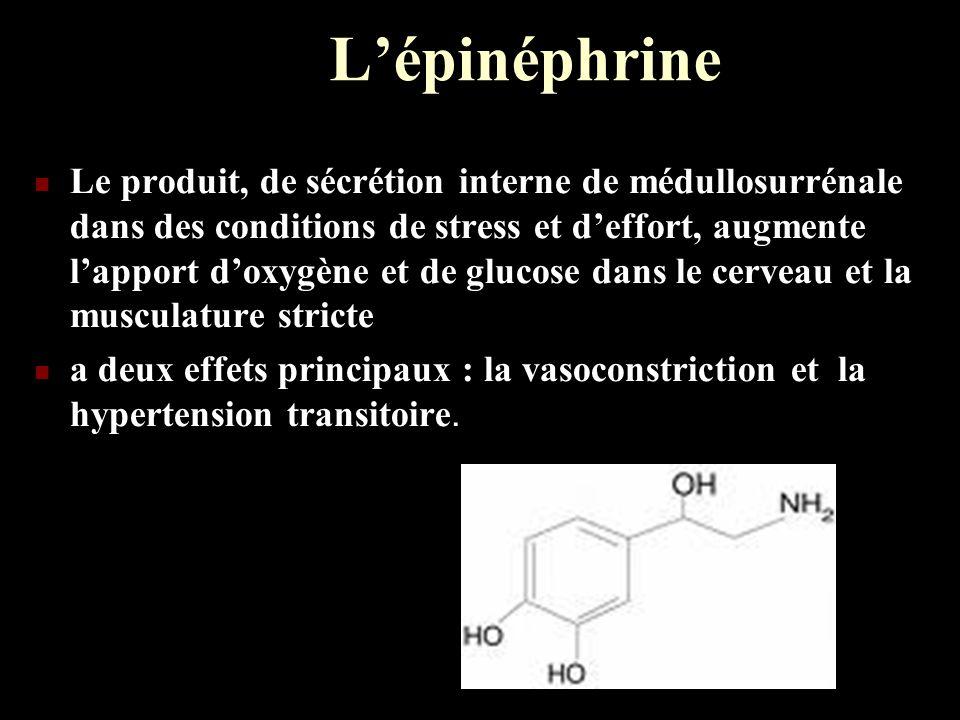 L'épinéphrine