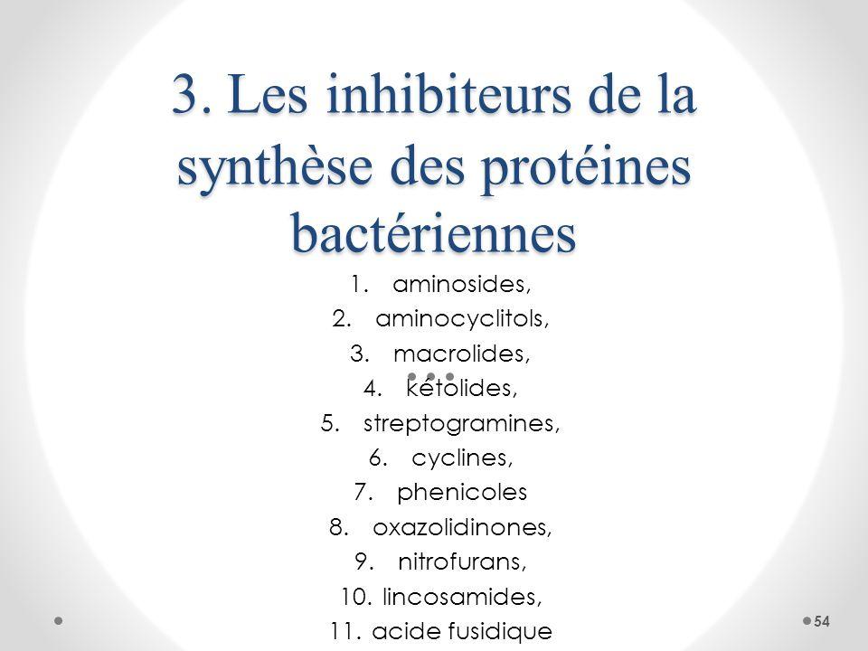 3. Les inhibiteurs de la synthèse des protéines bactériennes