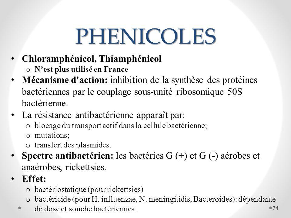 PHENICOLES Chloramphénicol, Thiamphénicol