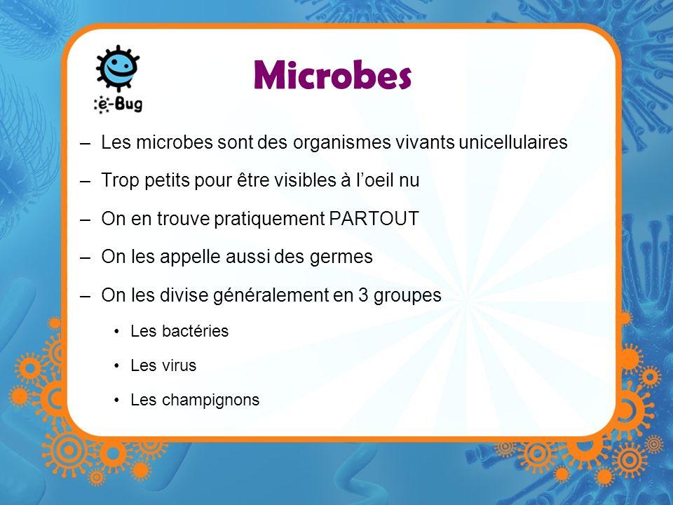 Microbes Les microbes sont des organismes vivants unicellulaires