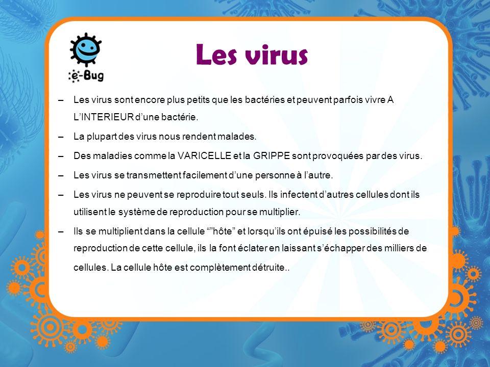 Les virus Les virus sont encore plus petits que les bactéries et peuvent parfois vivre A L'INTERIEUR d'une bactérie.