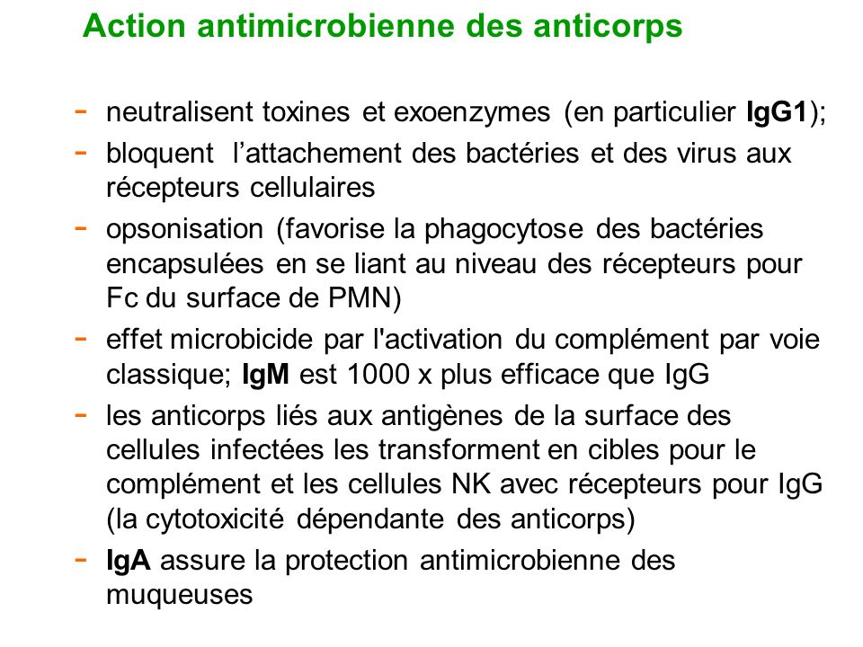 Action antimicrobienne des anticorps
