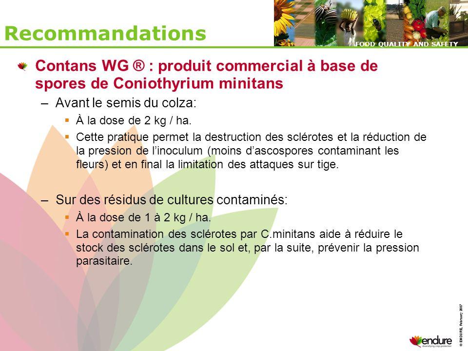 Recommandations Contans WG ® : produit commercial à base de spores de Coniothyrium minitans. Avant le semis du colza: