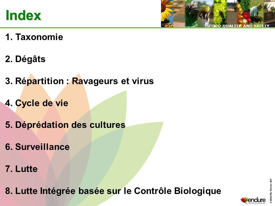 Index Taxonomie 2. Dégâts 3. Répartition : Ravageurs et virus