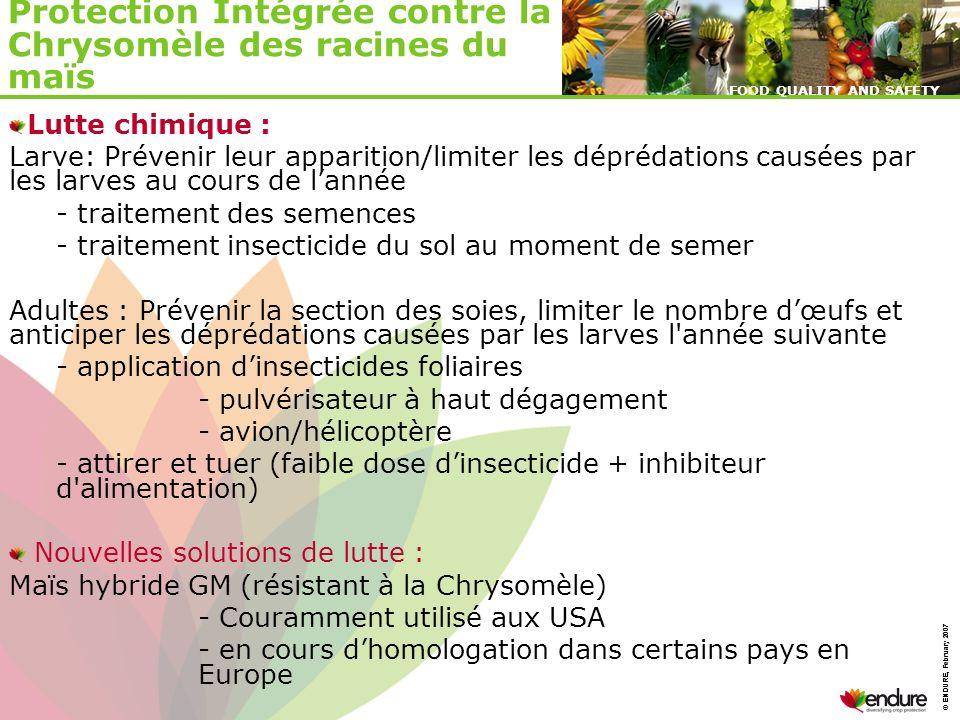 Protection Intégrée contre la Chrysomèle des racines du maïs