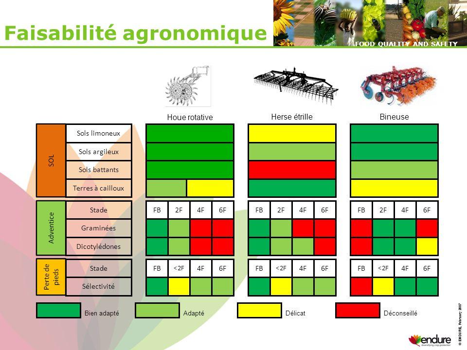 Faisabilité agronomique