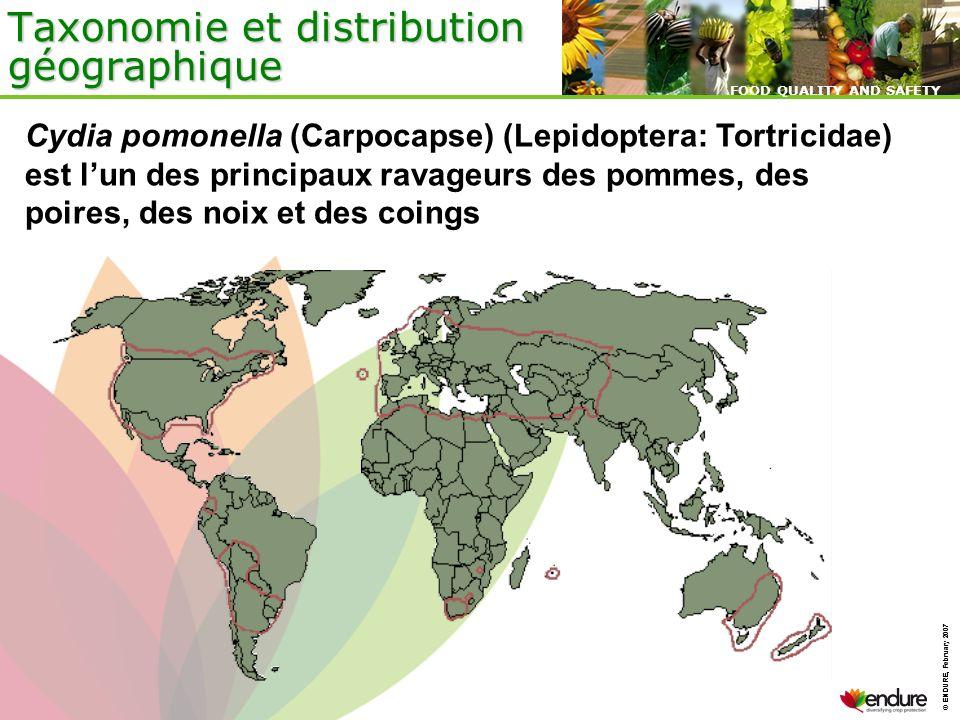 Taxonomie et distribution géographique