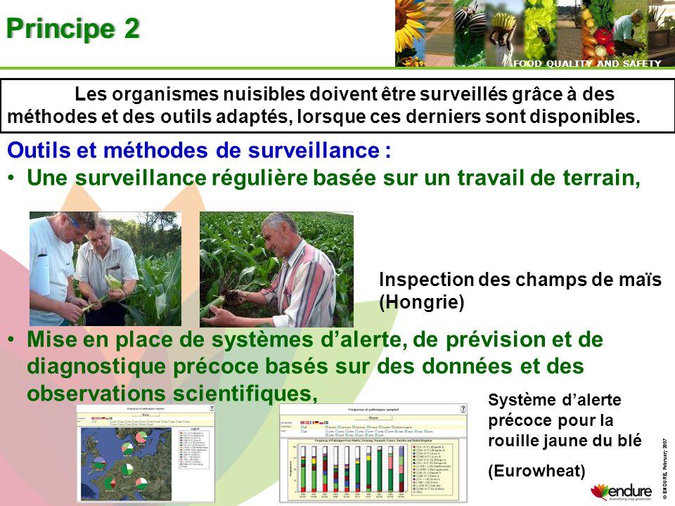 Principe 2 Outils et méthodes de surveillance :
