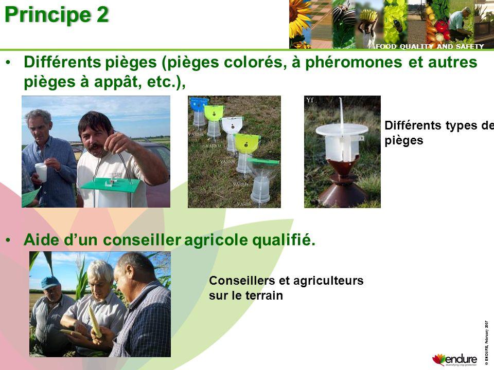 Principe 2 Différents pièges (pièges colorés, à phéromones et autres pièges à appât, etc.), Aide d'un conseiller agricole qualifié.