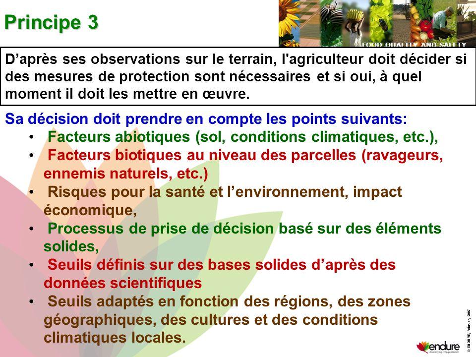 Principe 3 Sa décision doit prendre en compte les points suivants: