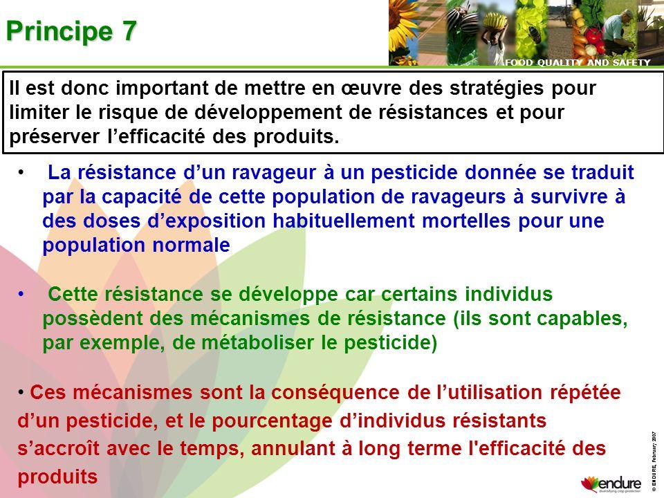 Principe 7Il est donc important de mettre en œuvre des stratégies pour.