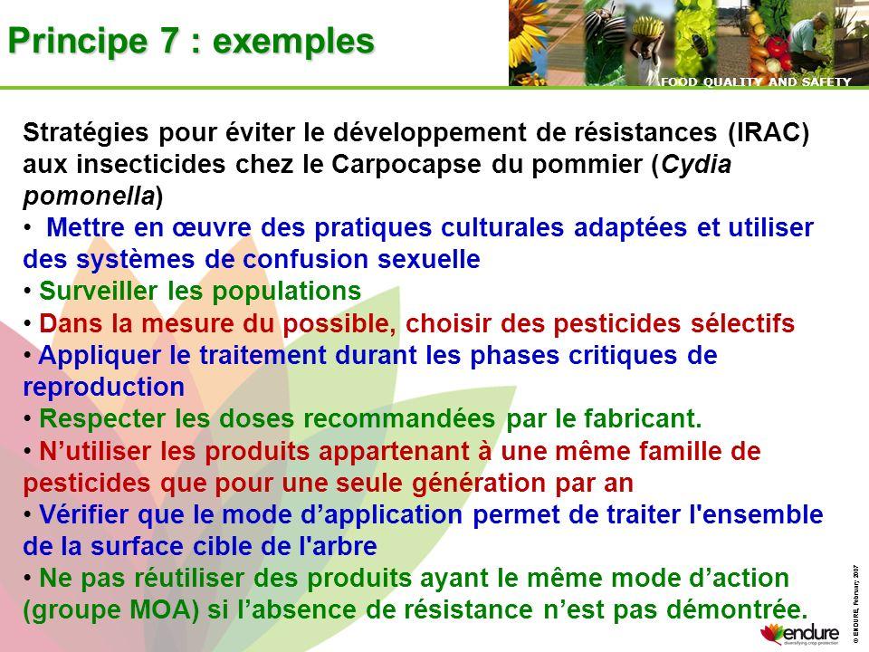 Principe 7 : exemples Stratégies pour éviter le développement de résistances (IRAC) aux insecticides chez le Carpocapse du pommier (Cydia pomonella)