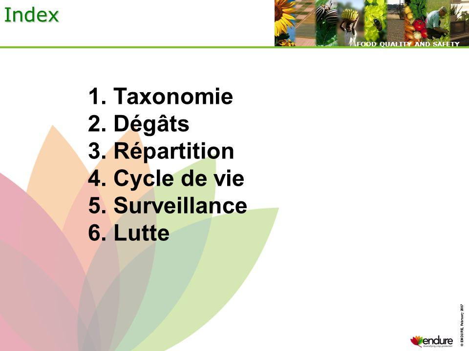1. Taxonomie 2. Dégâts 3. Répartition 4. Cycle de vie 5. Surveillance