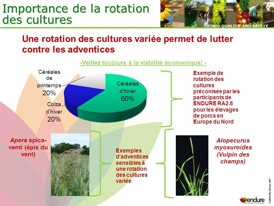 Importance de la rotation des cultures