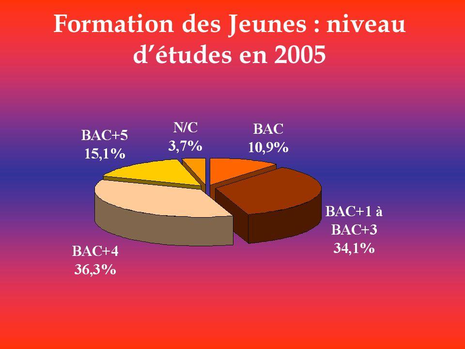 Formation des Jeunes : niveau d'études en 2005