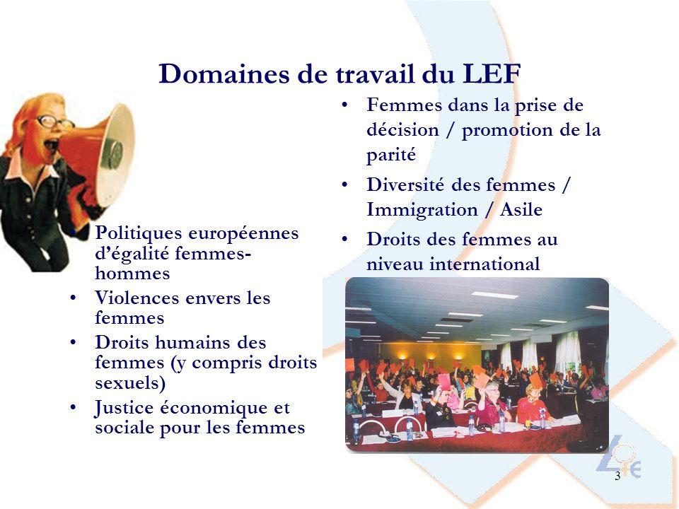 Domaines de travail du LEF