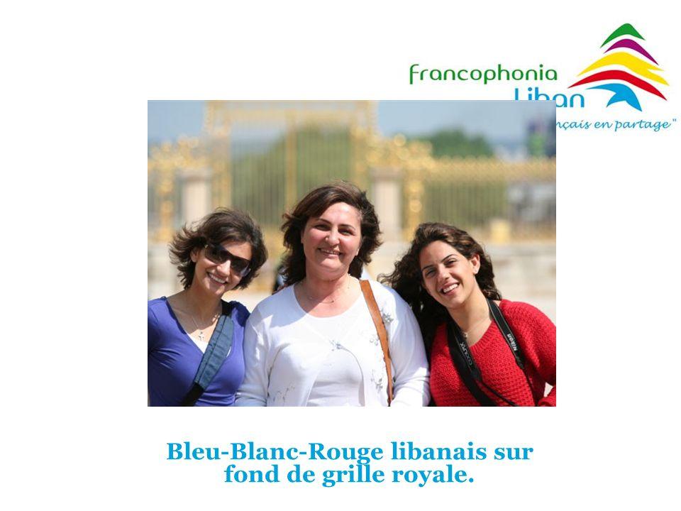 Bleu-Blanc-Rouge libanais sur fond de grille royale.