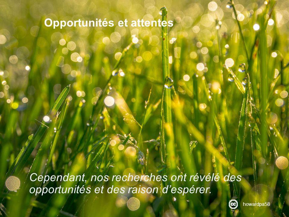Opportunités et attentes