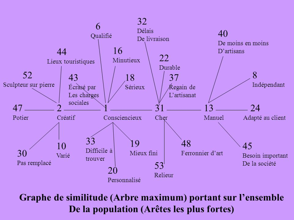Graphe de similitude (Arbre maximum) portant sur l'ensemble