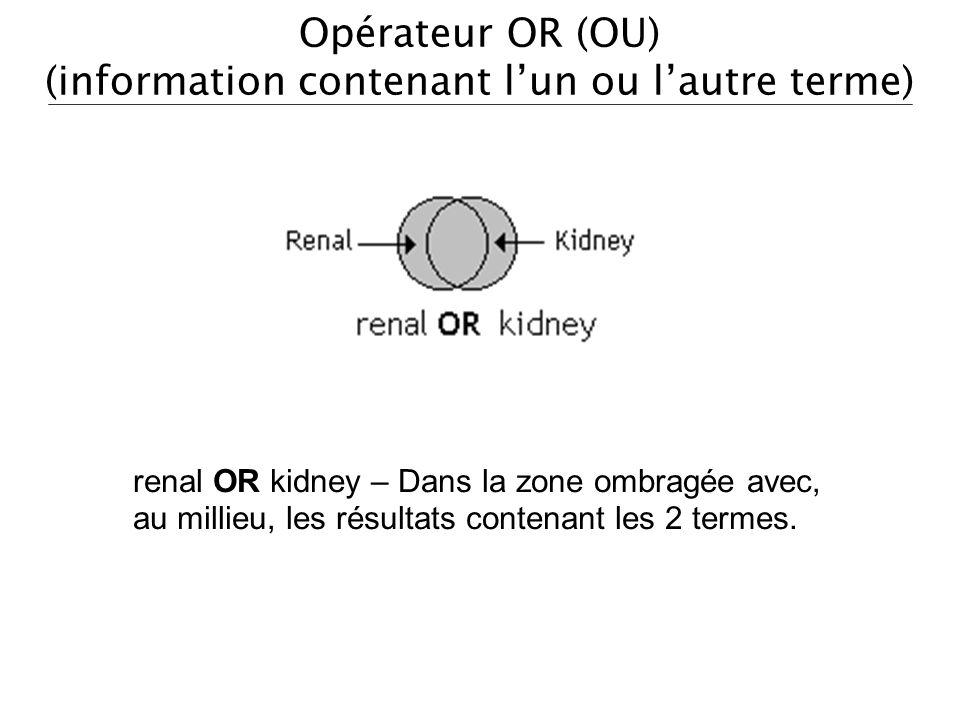 Opérateur OR (OU) (information contenant l'un ou l'autre terme)