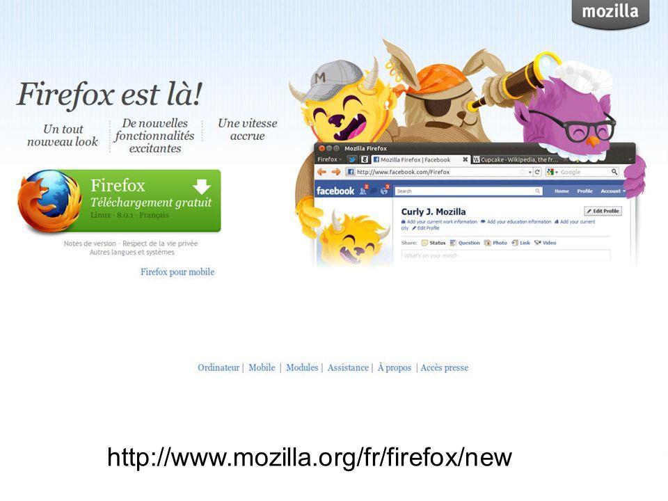 A part Internet Explorer, il y a deux autres choix de navigateurs web: Mozilla Firefox et Google Chrome, mis en circulation en Septembre 2008.