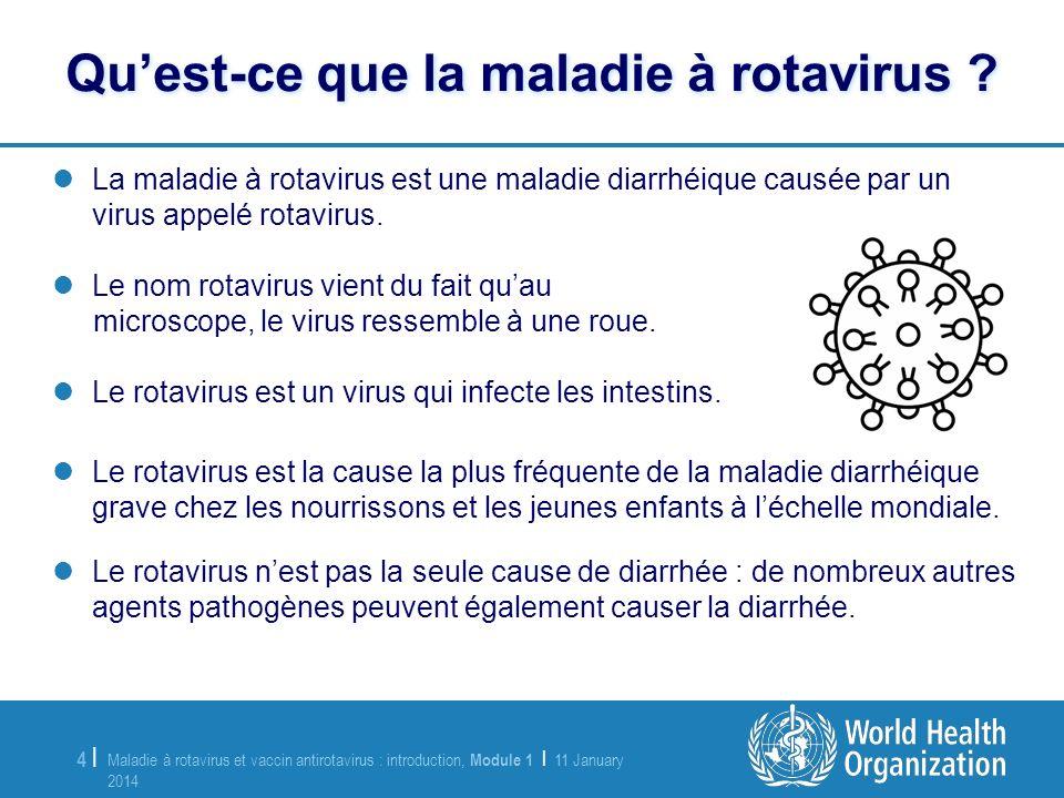 Qu'est-ce que la maladie à rotavirus