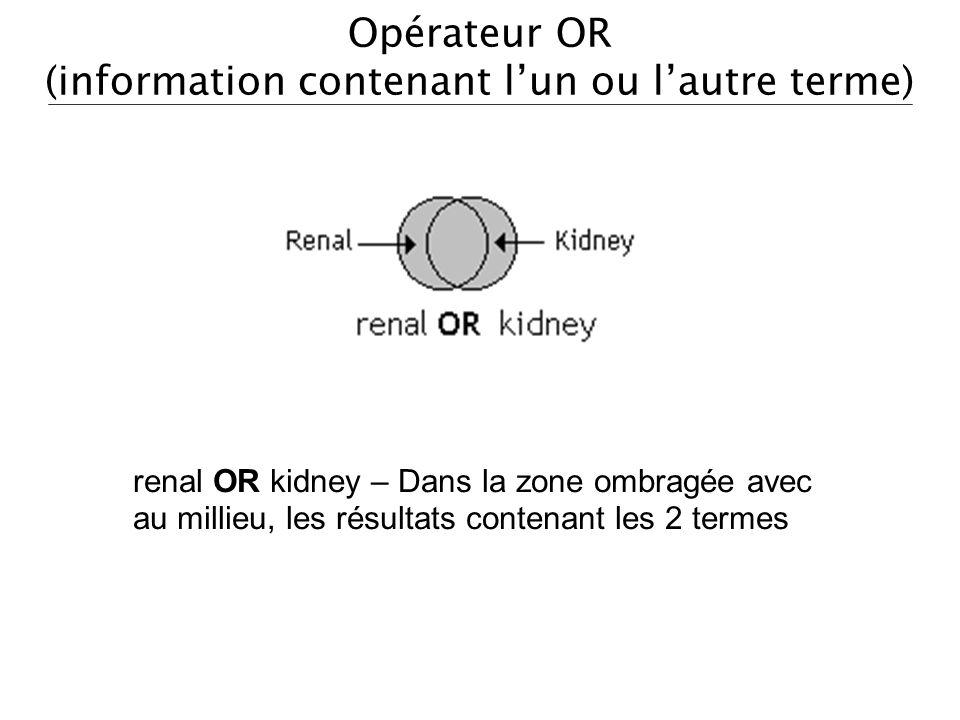 Opérateur OR (information contenant l'un ou l'autre terme)