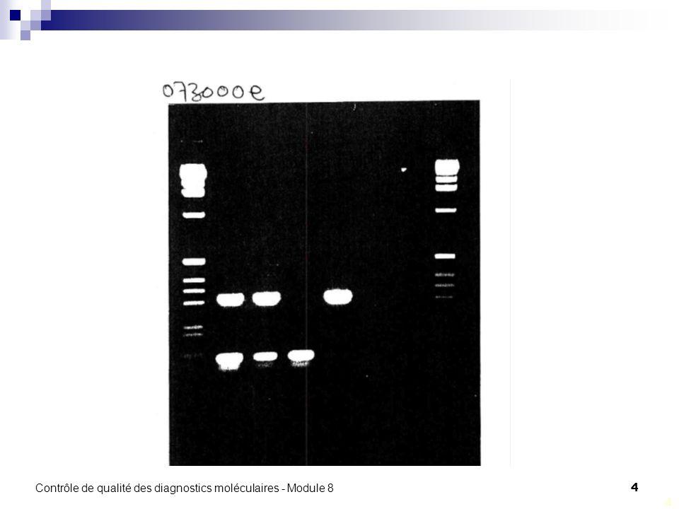 Contrôle de qualité des diagnostics moléculaires - Module 8