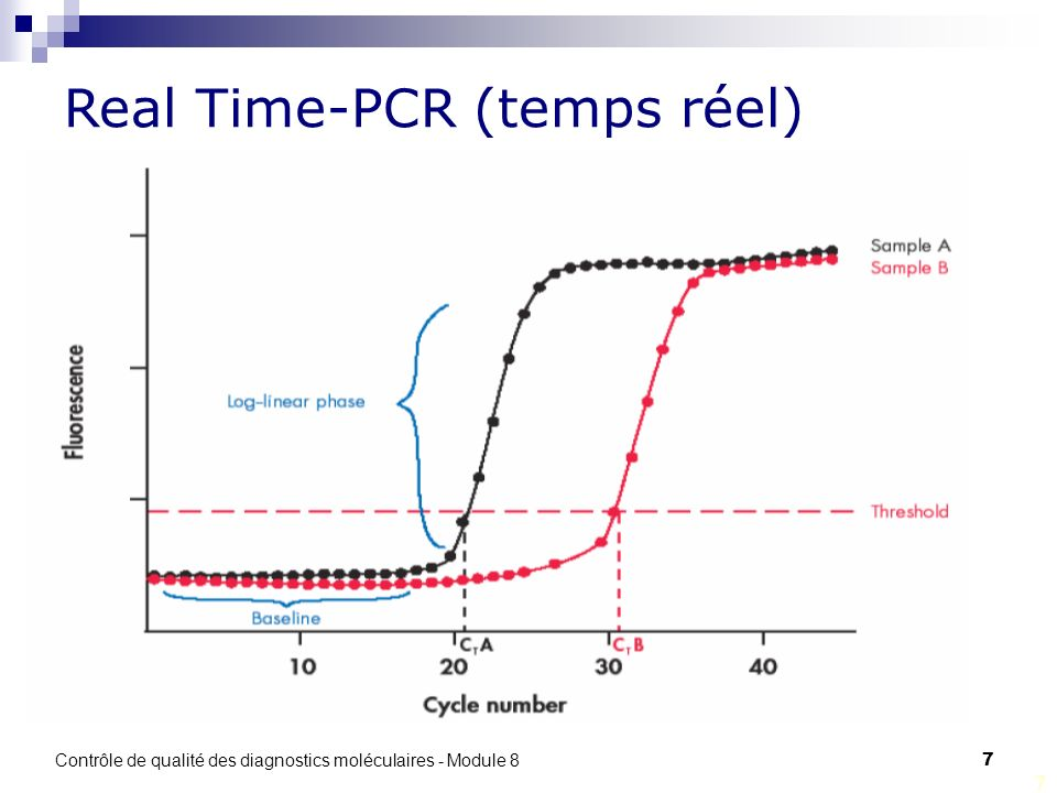 Real Time-PCR (temps réel)