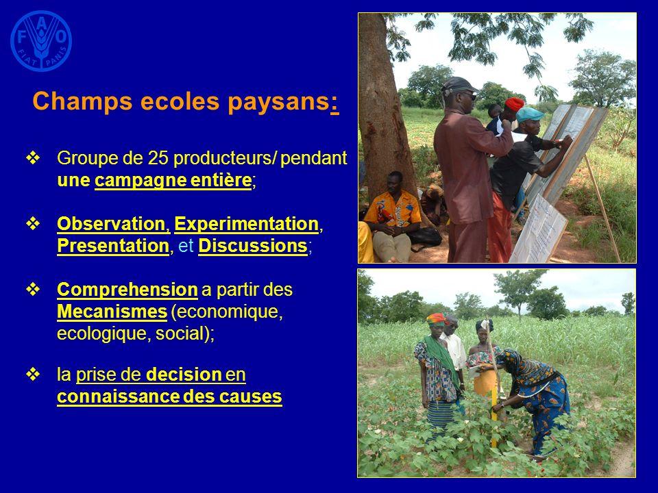 Champs ecoles paysans: