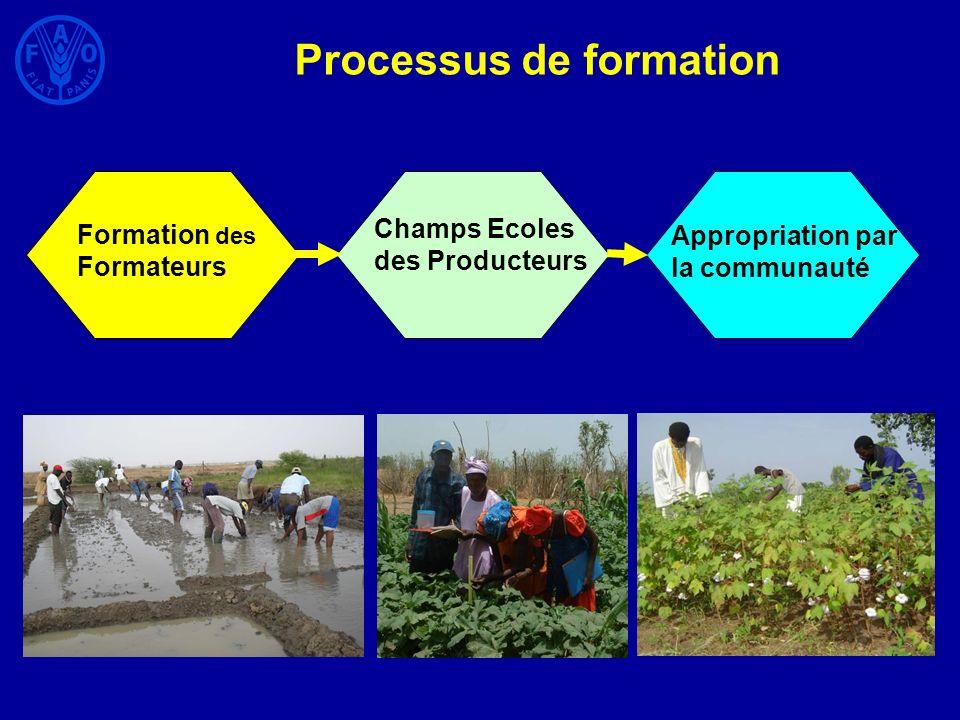 Processus de formation