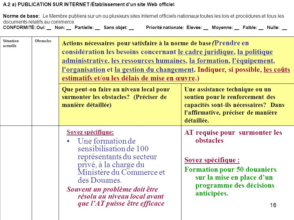A.2 a) PUBLICATION SUR INTERNET /Établissement d un site Web officiel