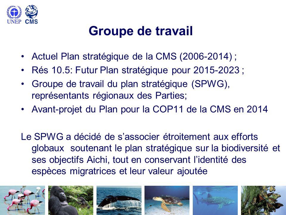 Groupe de travail Actuel Plan stratégique de la CMS (2006-2014) ;