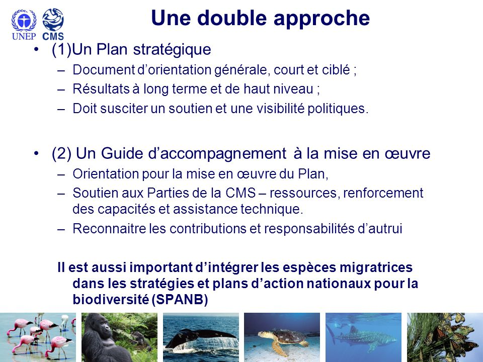 Une double approche (1)Un Plan stratégique