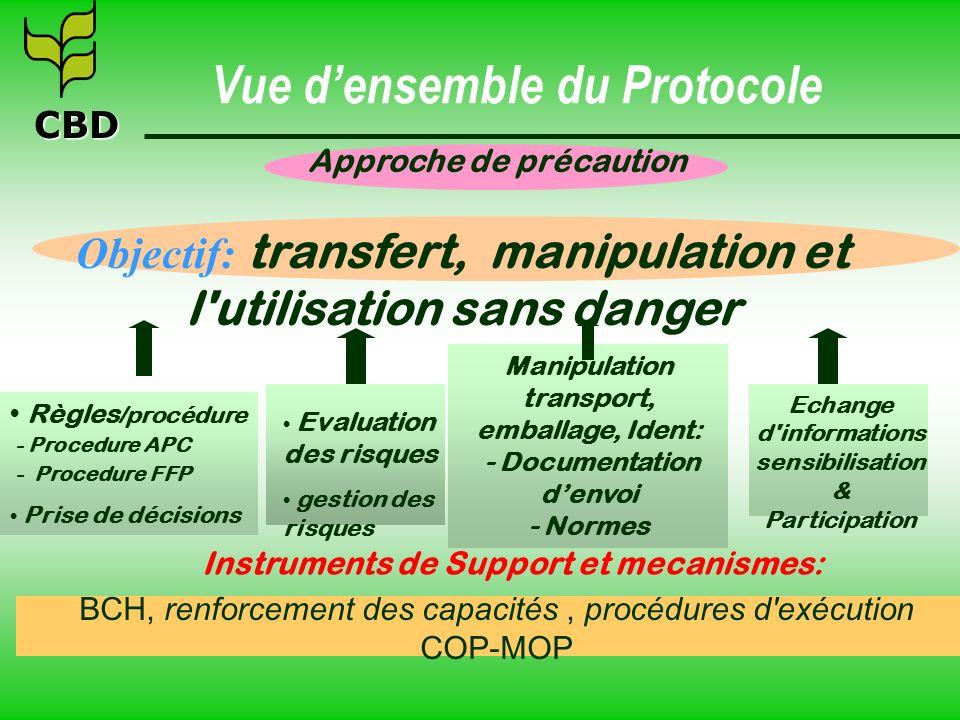 Vue d'ensemble du Protocole