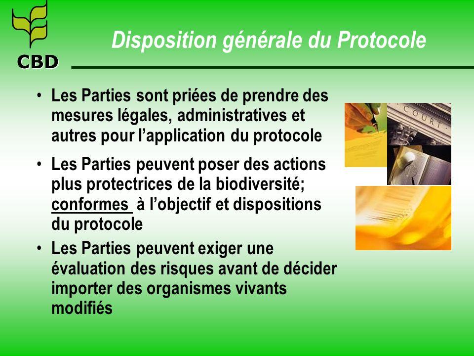 Disposition générale du Protocole