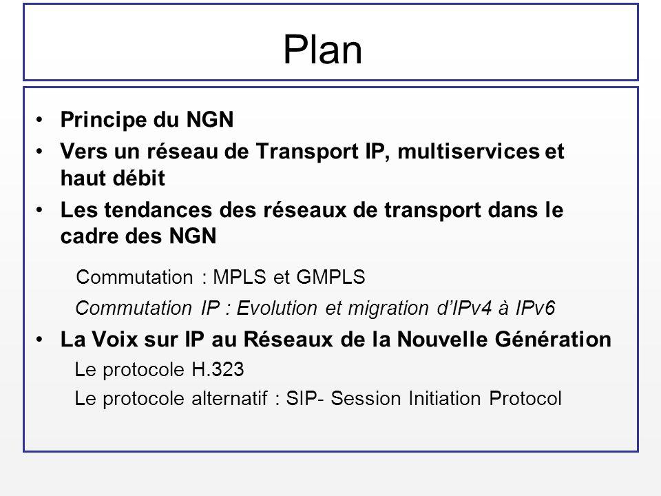 Plan Commutation : MPLS et GMPLS Principe du NGN