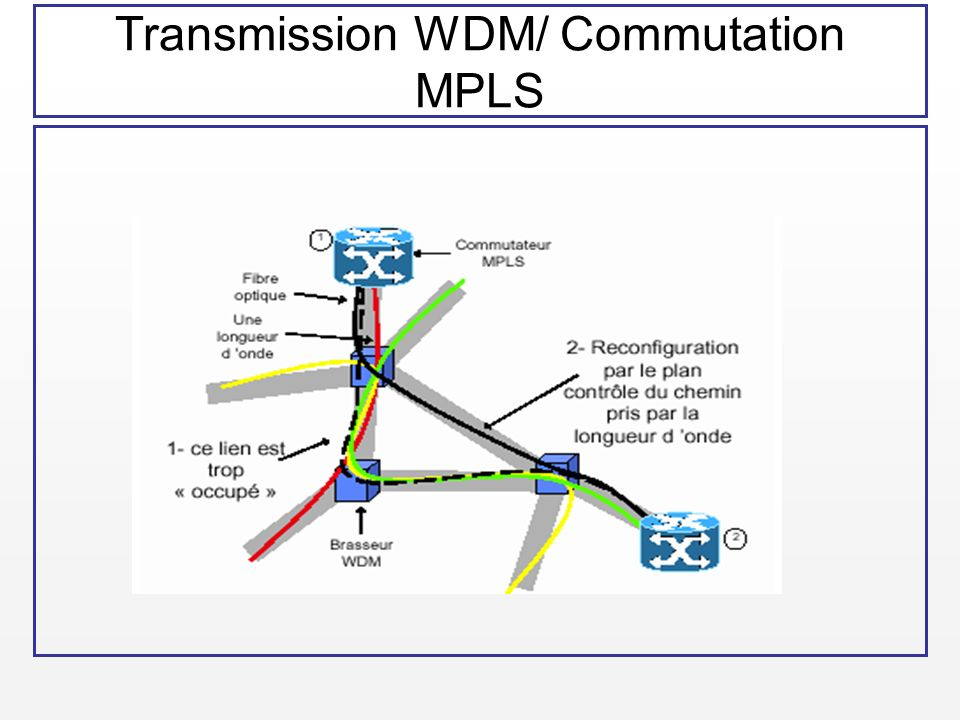 Transmission WDM/ Commutation MPLS