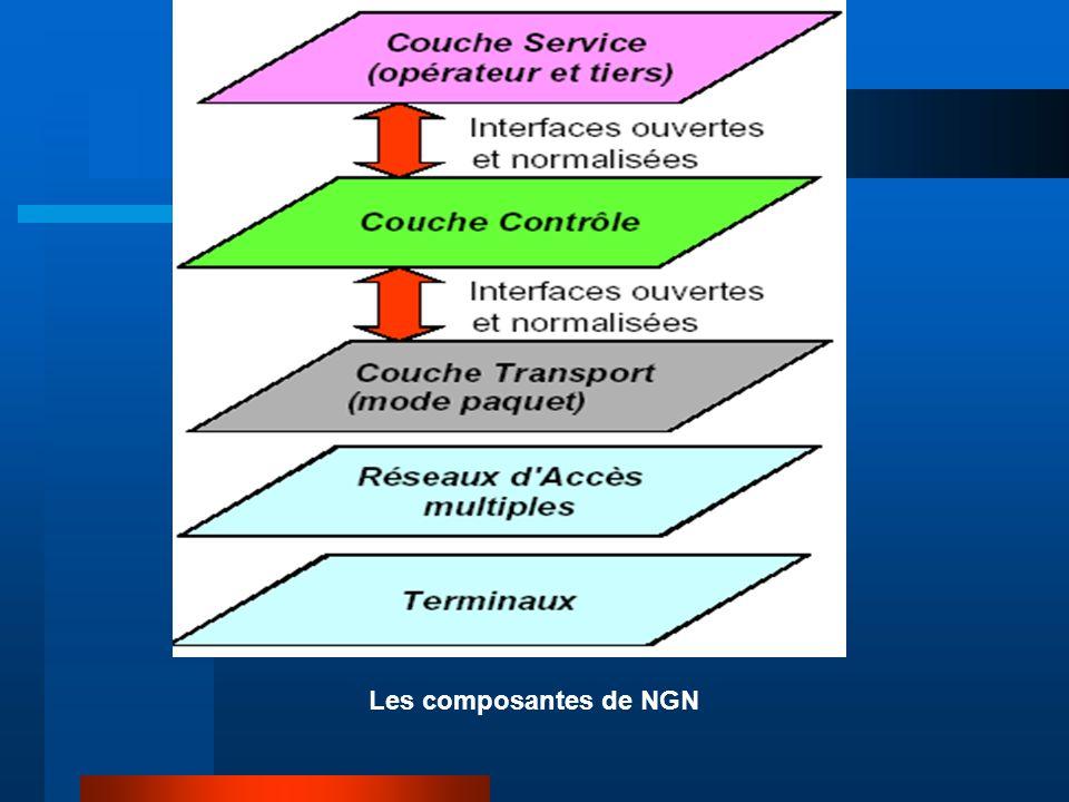 Les composantes de NGN