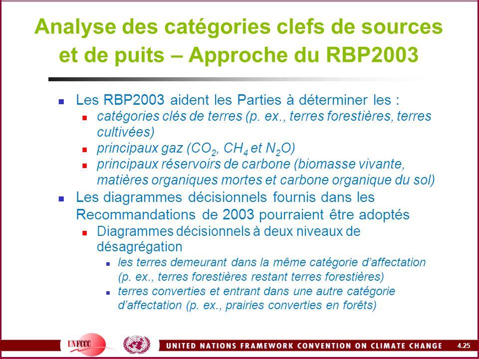 Analyse des catégories clefs de sources et de puits – Approche du RBP2003
