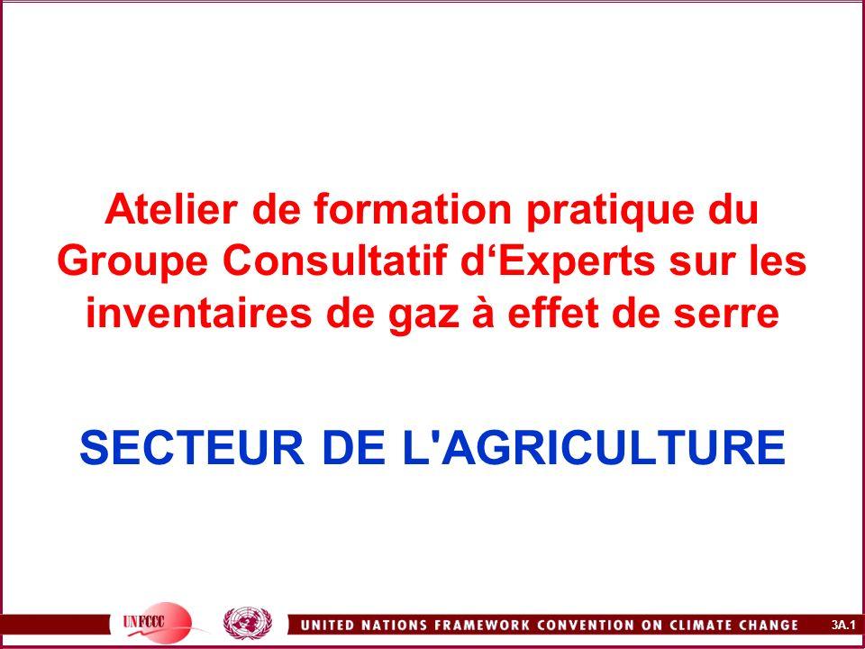 Atelier de formation pratique du Groupe Consultatif d'Experts sur les inventaires de gaz à effet de serre SECTEUR DE L AGRICULTURE