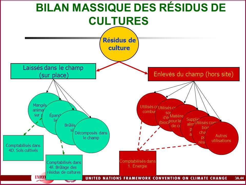 BILAN MASSIQUE DES RÉSIDUS DE CULTURES