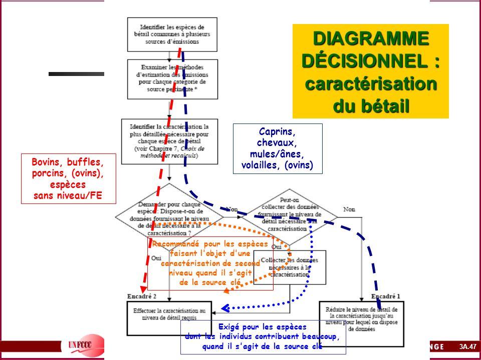 DIAGRAMME DÉCISIONNEL : caractérisation du bétail