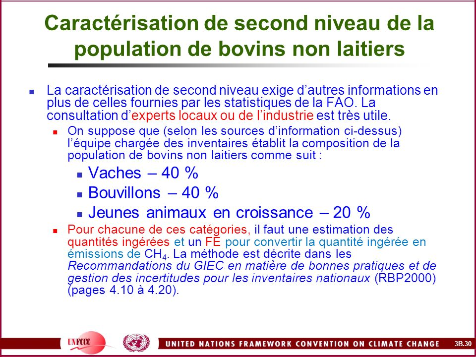 Caractérisation de second niveau de la population de bovins non laitiers