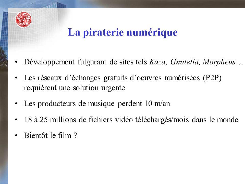 La piraterie numérique
