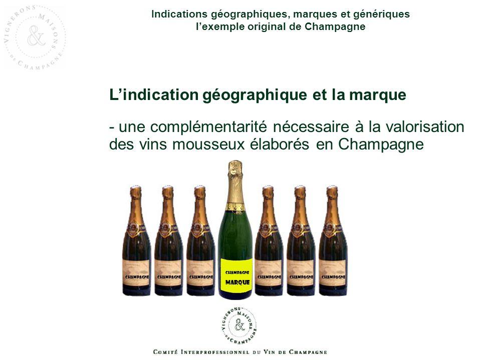L'indication géographique et la marque