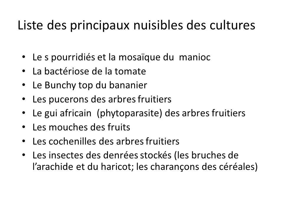 Liste des principaux nuisibles des cultures