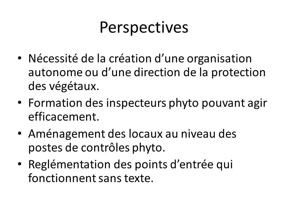 PerspectivesNécessité de la création d'une organisation autonome ou d'une direction de la protection des végétaux.